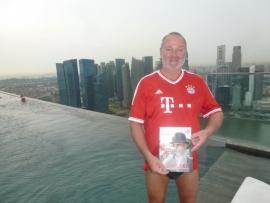2014 11 06 Singapur Marina Bay Sands Hotel Dachpool
