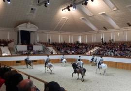 05 05 Königliche Hofreitschule in Jerez