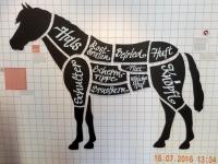 Die Ausstellung beginnt gleich mit einem spannenden Thema_Pferdefleisch