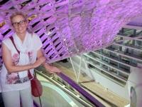 2016 10 27 Abu Dhabi Yas Viceroy Hotel mit Blick auf die Rennstrecke