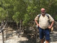 2016 11 02 Spaziergang durch Mangrovenwälder