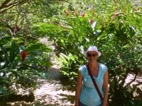 2016 11 06 Botanischer Garten Jardin du Roi mit den wunderschöne Pflanzen