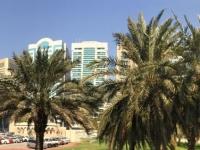 2016 10 26 Abu Dhabi Busfahrt