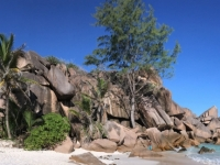2016 11 01 La Digue am Strand Grand Anse