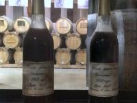 2016 10 16 Jerevan Ararat Brandy Fabrik ältester Brandy von 1902