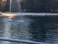 Springbrunnen beim Stanglwirt