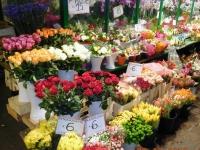 Blumenstand am Obstmarkt
