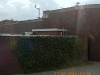 2016 08 13 Den Haag hier sitzen int Kriesgsverbrecher ein