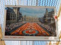 2016 08 22 Brüssel Blumenteppich Ausstellung in der Einkaufsgalerie