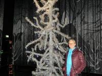 2016 12 11 Swarovski Weihnachtsbaum aus Kristall