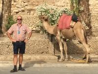 2016 11 22 Jericho rechts das Kamel