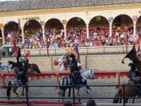 8 Pferde sind im Einsatz