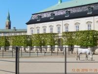 2016 05 12 Kopenhagen Schloss Christiansborg mit den königlichen Pferden