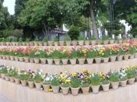 2016 03 15 Shiraz Mausoleum vom Dichter Saadi mit wunderschönem Garten 2