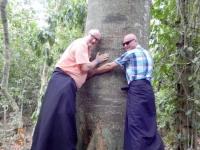 Kenia Kayas Heilige Wälder in Mijikenda