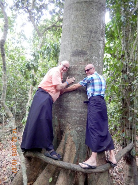 2016 02 14 Kenia Kayas Heilige Wälder in Mijikenda UNESCO