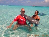 2017 03 27 Grand Cayman Rochenschwimmen massieren
