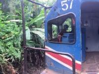 2017 03 25 Costa Rica Mit Zug durch den Dschungel