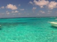 2017 03 27 Grand Cayman Rochenschwimmen mitten im Meer