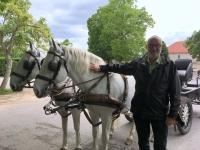 2017 05 11 Lipica Pferdegestütt Warten auf die Führung