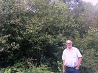 2017 09 12 Stuzica Buchenurwälder in den Karpaten