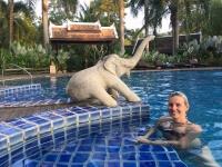 2017 11 01 Luang Prabang Hotel Villa Santi Erfrischung im schönen Pool