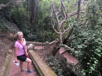 2017 11 02 Luang Prabang 328 Stufen auf den Stadthügel Mount Phousi