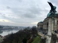 Bronze Adler Statue am Budaer Burg