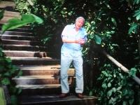 Sir Richard Attenborough erklärt die Flugechsen aus vergangener Zeit
