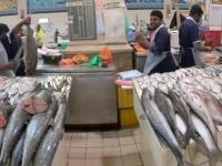 2017 02 17 Fischmarkt mit reichlichem Angebot