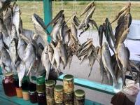 2018 06 27 Getrocknete Fische auf dem Rückweg