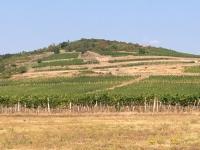 Ungarn Kulturlandschaft Tokajer Weinregion Kopfbild