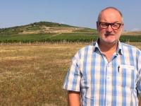 Ungarn Kulturlandschaft Tokajer Weinregion