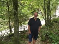 Österreich Alte Buchenwälder der Karpaten