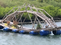 2018 09 26 Tainan Anping Hafenrundfahrt interessante Brücke
