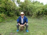 2018 10 26 Okawango Delta so gross ist die Elefantenkake
