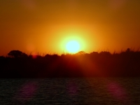 2018 10 28 Chobe Nationalpark Bootsfahrt mit Sonennuntergang