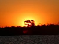 2018 10 28 Chobe Nationalpark Bootsfahrt mit perfekten Sonnenuntergang