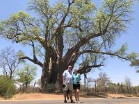 2018 10 29 Victoria Falls uralter Boabab Tree