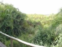 2018 10 25 Okawango Delta Blick auf Fluss von unserem Zelt