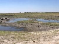 2018 10 28 Chobe Nationalpark mit totem Elefanten