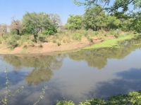 2018 10 31 Livingstone Maramba Lodge Frühstück am Fluss