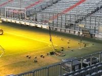 Allianz Arena Führung auch den Tauben gefällt es