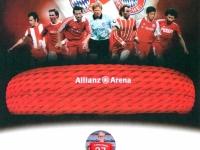 Allianz Arena Besuch 15 12 2018 Zertifikat Jutta