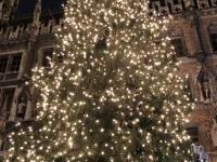 Christbaum vor dem Rathaus