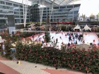 Grosser Eislaufplatz