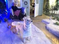 2018 12 31 Portoroz Weihnachtsaussstellung vor dem Casinoeingang mit Schlittenhund