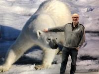 Netter Eisbär