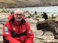 2019 03 06 Grave Cove Kolonie Rockhoppers Pinguine am Meer mit Caracara