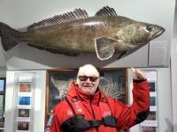 2019 03 10 Grytviken Museum riesiger Fisch